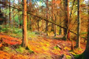Autumn Woodlands by oldhippieart