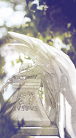 Weeping Angel (GIF) by L-a-m-o-N