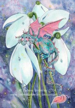 Little Snowdrop Dragon 2014 by JoannaBromley
