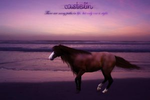 Contest:::castelin:::manip by makian-feathers