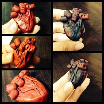 Human Heart (making) by littlenikita