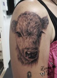 Baby Cow Tattoo by Zindy