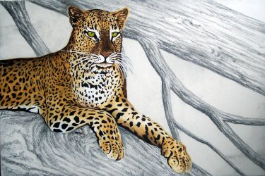 Leopard painting W.I.P.  II by HOULY1970