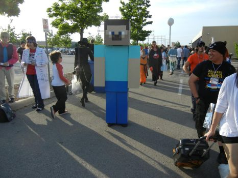 Anime North 2012 - Minecraft Cosplay by jmcclare