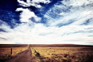 Pursue Some Path by solefield