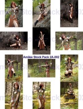 Donator Pack 2A pt 2 Amilee Warrior by jagged-eye