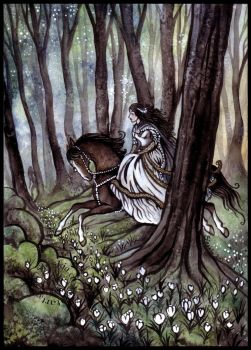 Aredhel in the forest of Nan Elmoth by Sieskja