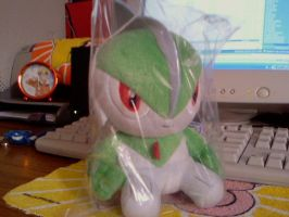 My Gallade Plushie