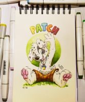 FC badge: Patch by pandapaco