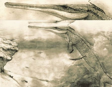 Cricosaurus by Hyrotrioskjan