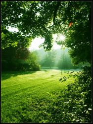 Green Morning by duo