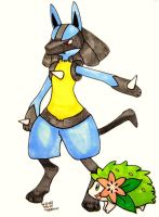 Lucario and Shaymin Commission by MillyT