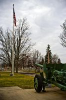 Guns Graves and Old Glory by robertllynch