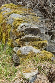 Stone Wall by calr121810