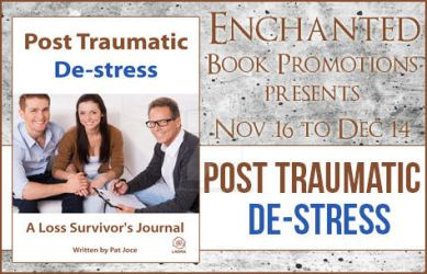 Tour Banner Post Traumatic De-Stress by eternalised