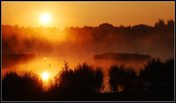 The forest lake sunrise by jchanders