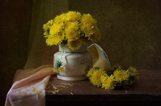 once again about dandelions.. by An-gora