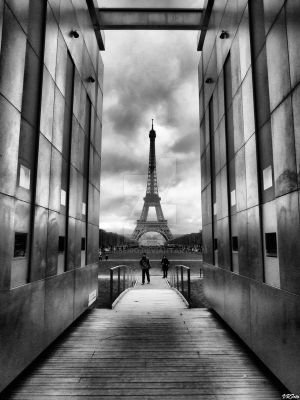 Eiffel tower by vmribeiro