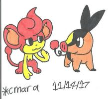 Pansear and Tepig