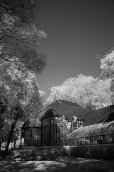 IR LCR25 by RBcolor