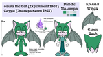 Saura the bat reference by lizathehedgehog