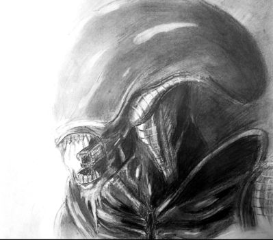 Alien Xenomorph by Blackheart73191