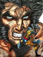 Farewell Logan Death of Wolverine Jim Lee Homage by KwongBee-Arts