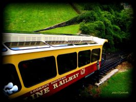 Mountain train by gintautegitte69