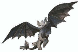 HTTYD - Toothless by Reta-Rees