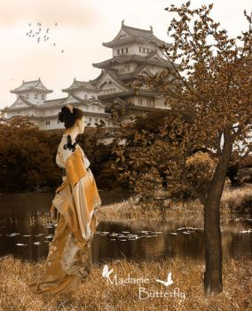 Madame Butterfly by vision-of-shadows