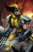 Wolverine2014colors by hanzozuken