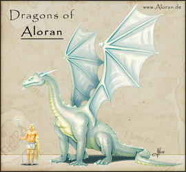 Dragons of Aloran by Iphis