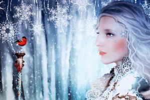 Herald of winter by Nataly1st