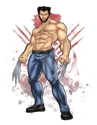 Logan The Wolverine by urbanmusiq