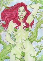 Poison Ivy by gregohq
