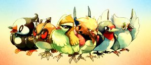 Pokemon : Common birds