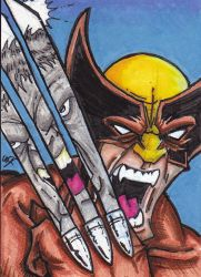 Wolverine Hulk reproduction cover PSC by William-Kunkle