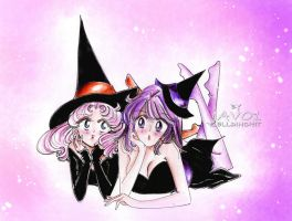 Chibiusa and hotaru - the witches ( halloween eve) by zelldinchit