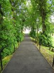 Railed Pathway - Stock by supersnappz16
