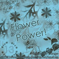 Set 13 - Flower Power by pange