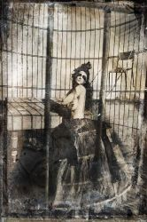 Caged Circus by larafairie