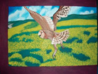 Barn Owl Flying by joshin-yasha