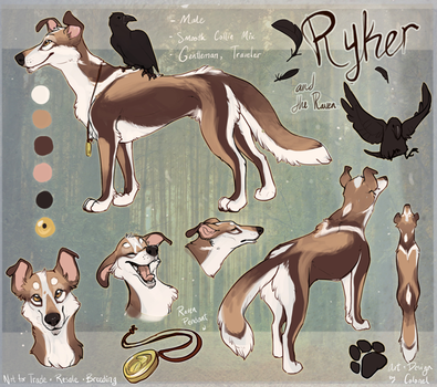 Ryker Ref 2013 by Colonels-Corner