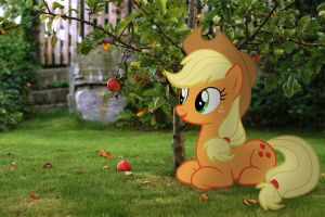 Applejack and Bloomberg by StormXF3