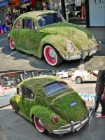 A Green Bug by zynos958