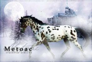 Metoac by Impressive-Instant