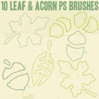 Leaf and Acorn Outline Brushes by chokingonstatic