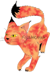 Drawing: Accidental FiyahKitteh Concept by FiyahKitteh