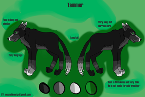OC Reference: Tammer Jr. by MoonShineSTP