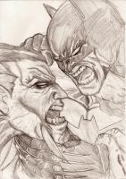 Batman Vs Rash by nic011